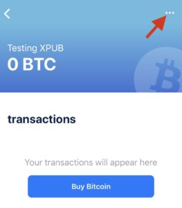 xpub bitcoin explorer)
